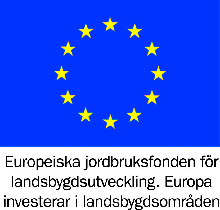 Europeisk symbol